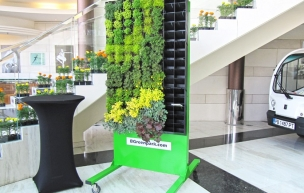 Mobile-BGreenwall-separate-the-scape-21-lol.jpg