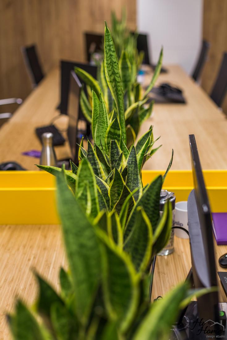 Office-22.jpg