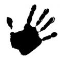 hand sss.jpg