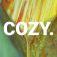 Cozy.Dibla.Logo.jpg