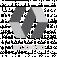 vision-code-logo-1.png